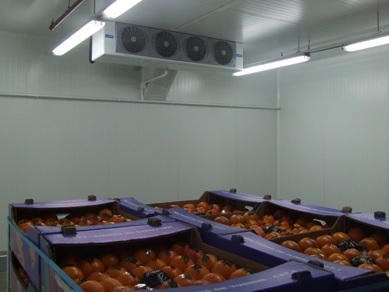 Fruit warehouse - RONGIS Covered Market - Paris, France - FHC 30 unit cooler with 4 fans