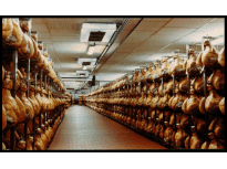 HAM SEASONING ROOM - Parma - Italy