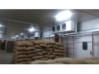 SANTHOS AGRO, Shimoga distt. Karnataka (India)
