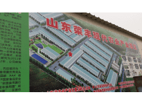 Shandong Rongfeng Edible Mushroom co., ltd 