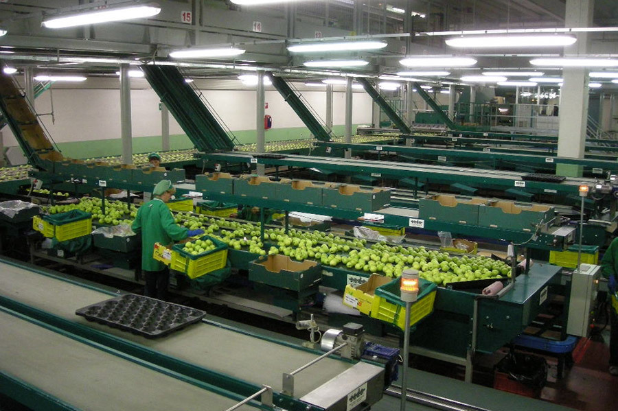 Industrial refrigeration, apples, PDF industrial unit coolers, Italy